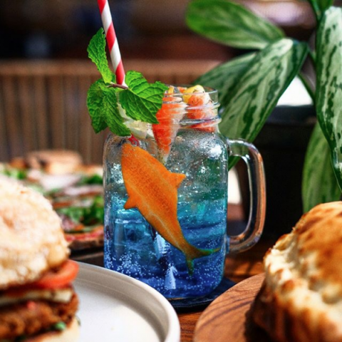 "Brunch Club_2019-09-27 Brunch Club on Instagram ""DEEP BLUE TONIC Refreshing, with a bite ? • #shark week #cocktail #mixolog[...]"