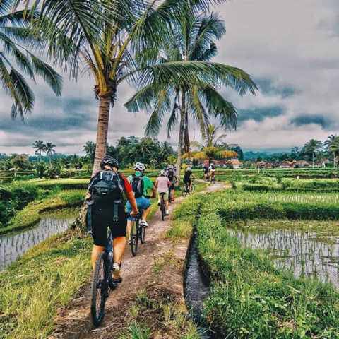 "Screenshot_2019-09-27 Bali Tourist Services on Instagram ""Explore the countryside on becycle And visit villages and great t[...]"